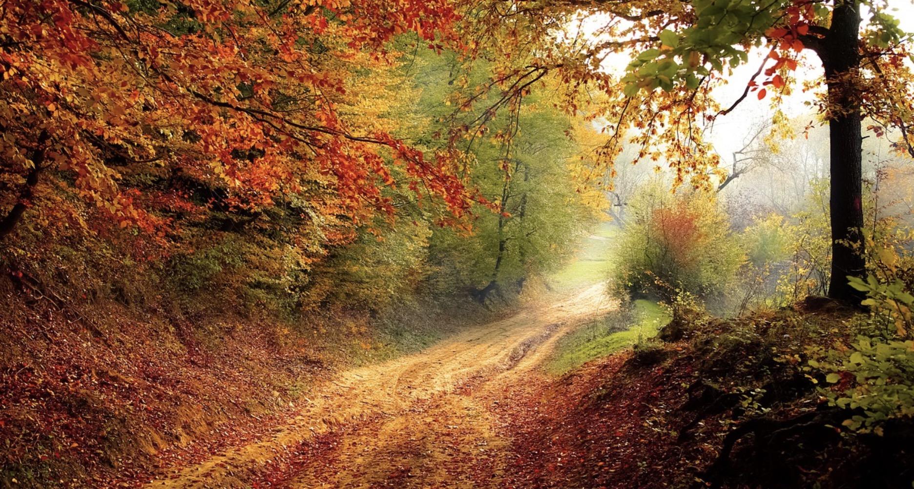 Photo of L'automne arrive ! Je mets quoi ?